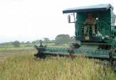 Importaciones agropecuarias, las más altas en nueve años